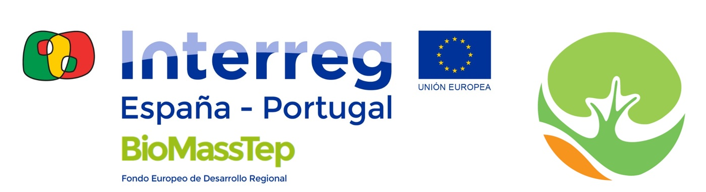 logo BIOMASSTEP - INTERREG_definitivo